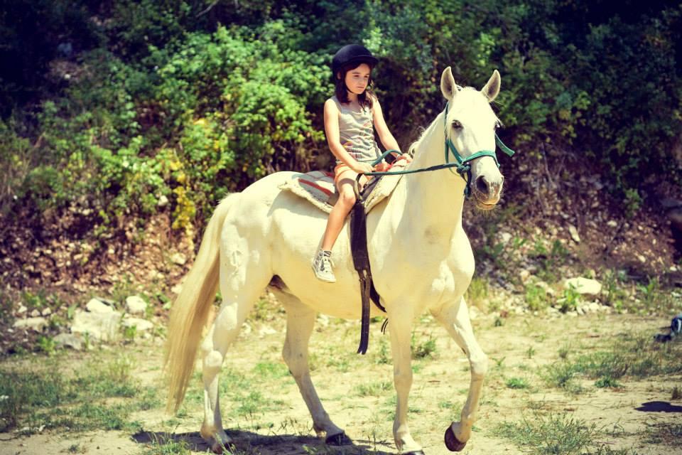 equitação2